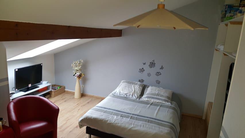 Chambre dans appartement en triplexe - Besançon - Apartament