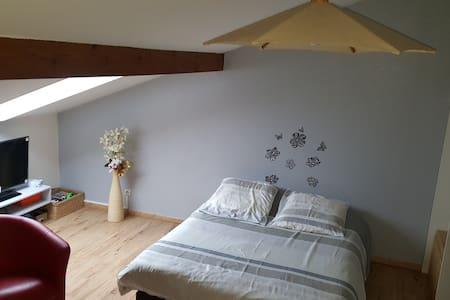 Chambre dans appartement en triplexe - Besançon - Wohnung