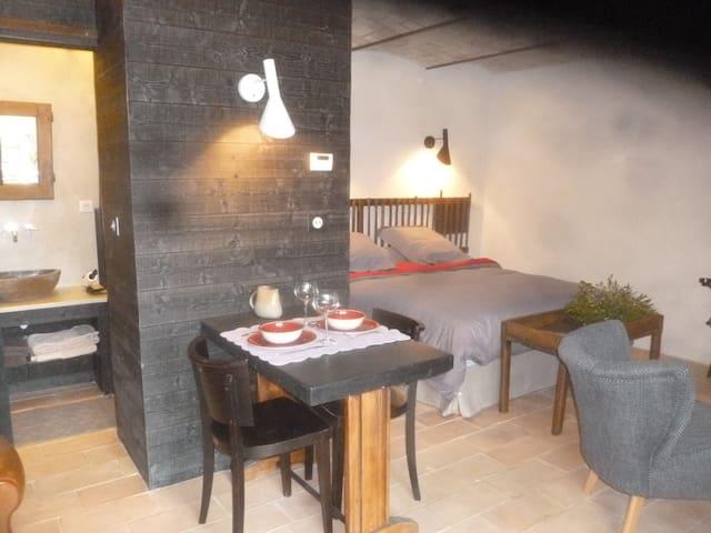 GÎTE POUR 2/3 PERSONNES - ROTTIER DRÔME PROVENCALE - La Motte-Chalancon - Apartemen