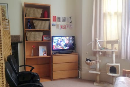 Cosy double bed -Islington - Sorry but just Girls! - Londen - Appartement