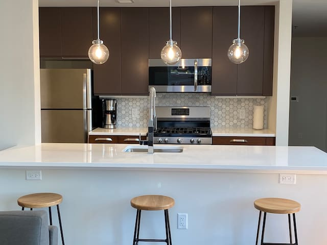Brand New Furnished Rental in Downtown Newark