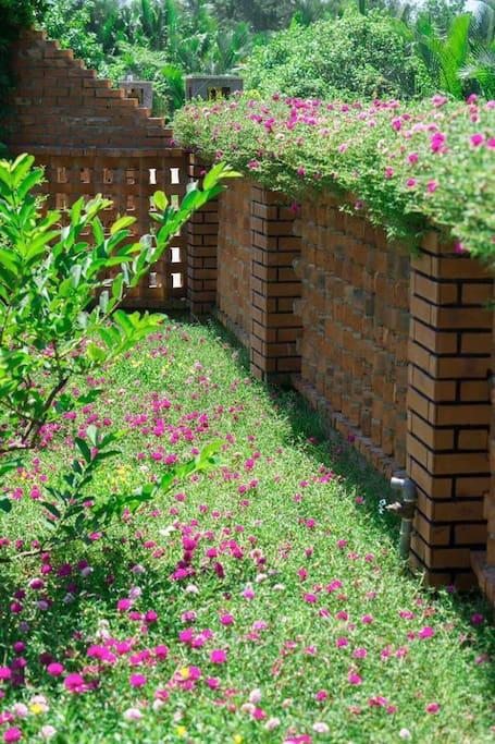 Flower Garden - Hoi An Residence Villa