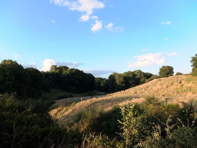 Wunderschöne Aussicht von der eigenen Terrasse – Direkter Zugang zum Naturschutzgebiet NATURA 2000, Wald mit Wanderwegen und Bach