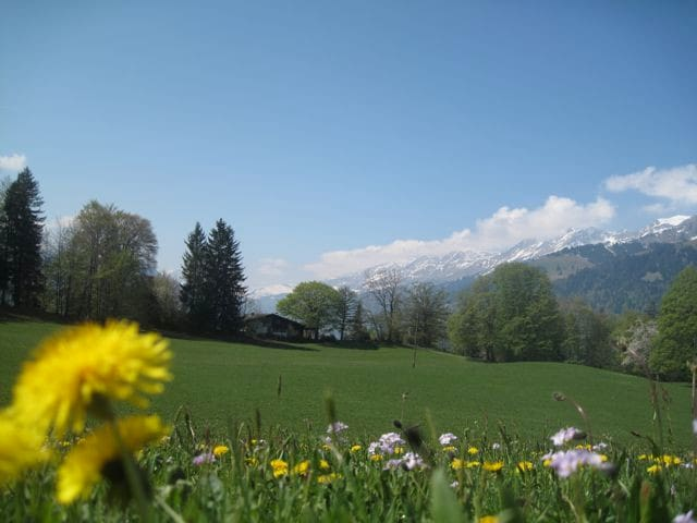 Luxury chalet with amazing views - Aeschi bei Spiez