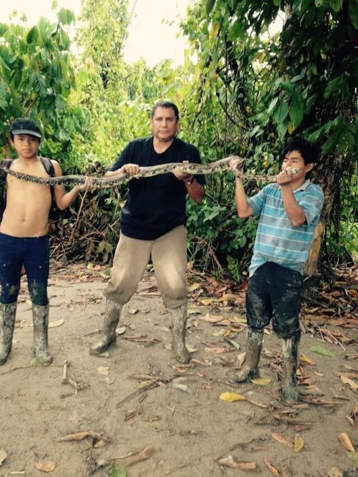 Tapirillo Amazonia Eco vivencial