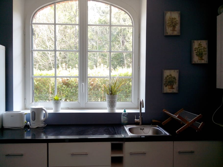 Fenêtre de la cuisine avec vue sur la forêt