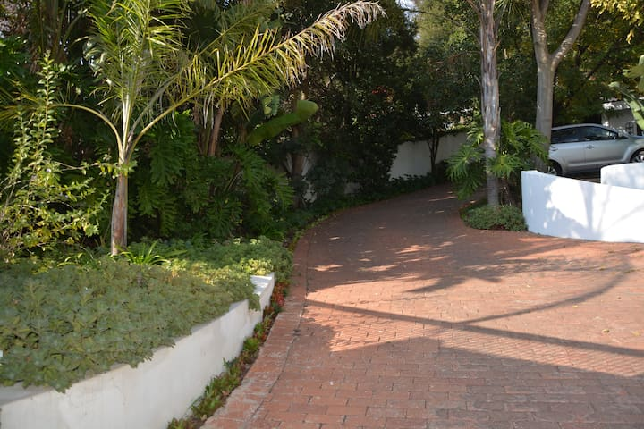Driveway leading to our front door and your room
