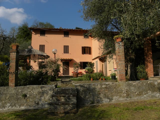 COUNTRY HOUSE IN THE GREEN HILLS    - Pescaglia - Hus