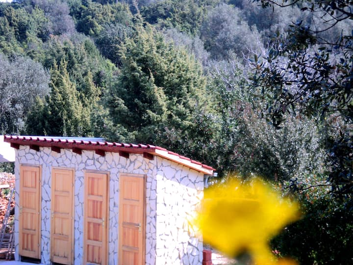 Little private camp Dugi otok 3a_parcel