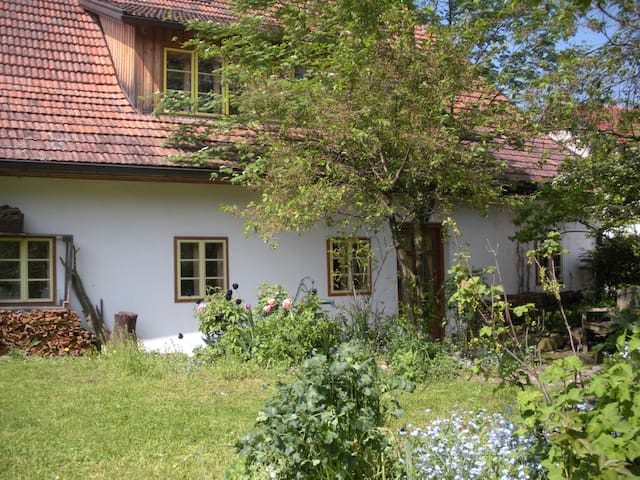 Nice Apartment in old Farmhouse - Gries bei Oberndorf - Apartment