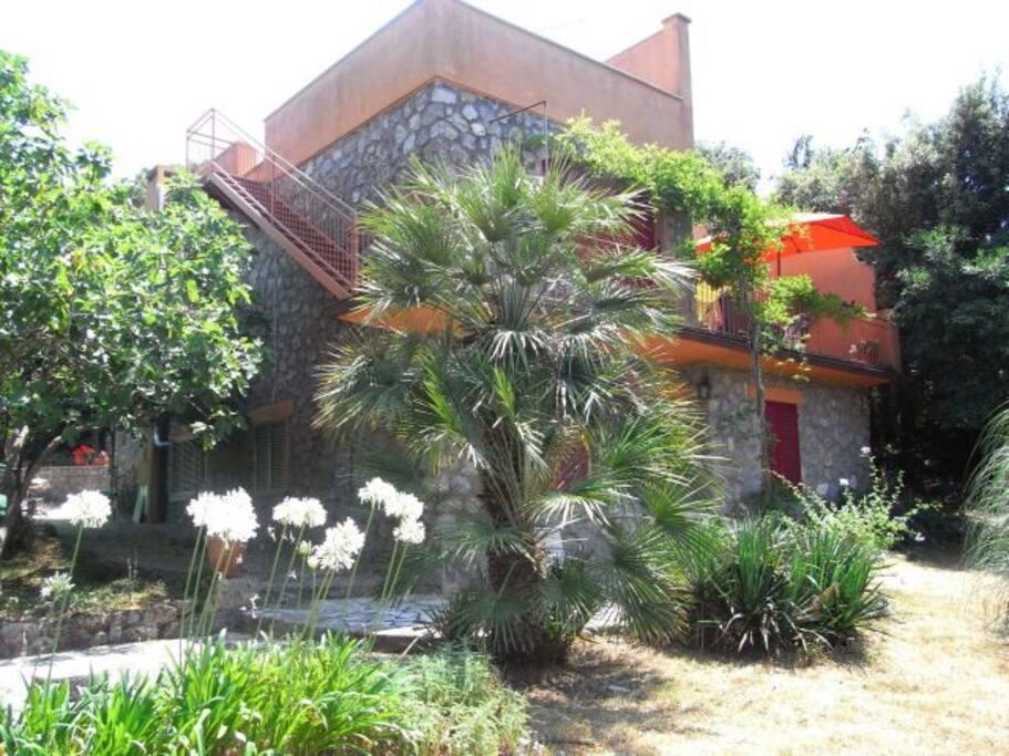 Der Garten und die untere Wohnung