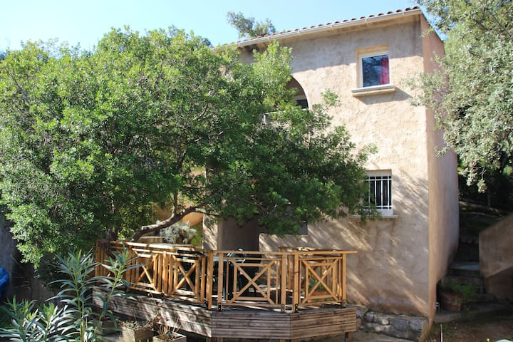 Apartment shaded a few meters from the sea - Calcatoggio - Apartment