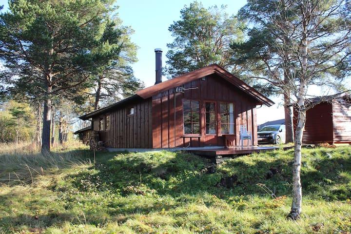 Ådne-Bu mountain cabin in Geilo