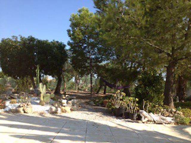 Estudio en medio de la naturaleza - Alicante - Muchamiel - Chalé