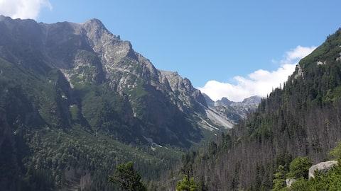 Cosy apartment near Tatra Mountains