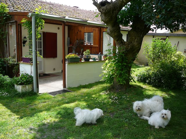 Studio mit Veranda und Garten - Parentis-en-Born - Huoneisto