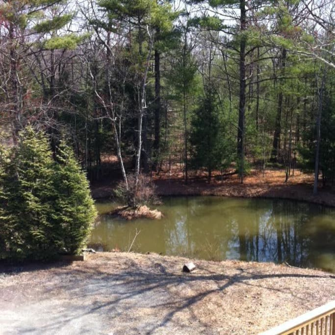 view of pond from your bedroom window