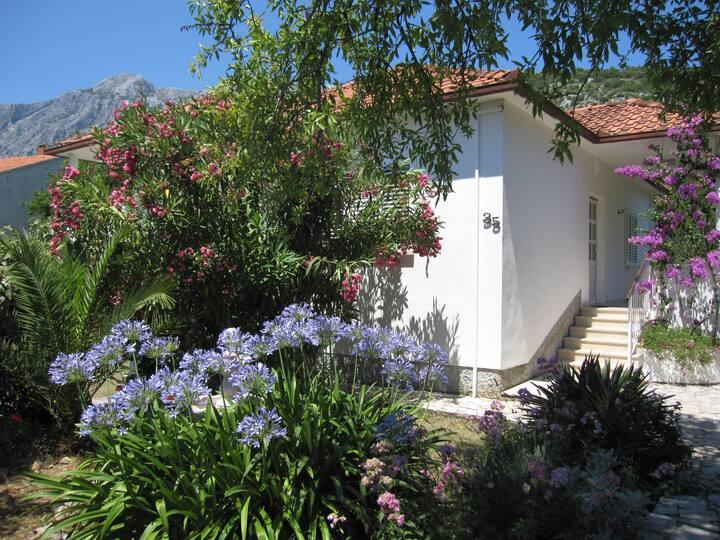 Ferienhaus zu vermieten 80 qm