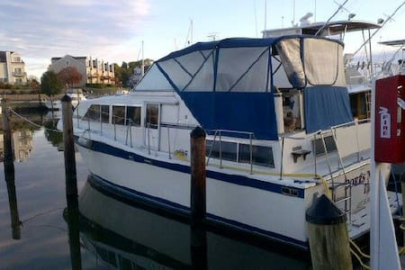 Motoryacht rental - Chester