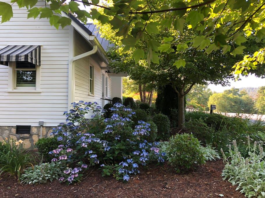 Hopewood Cottage