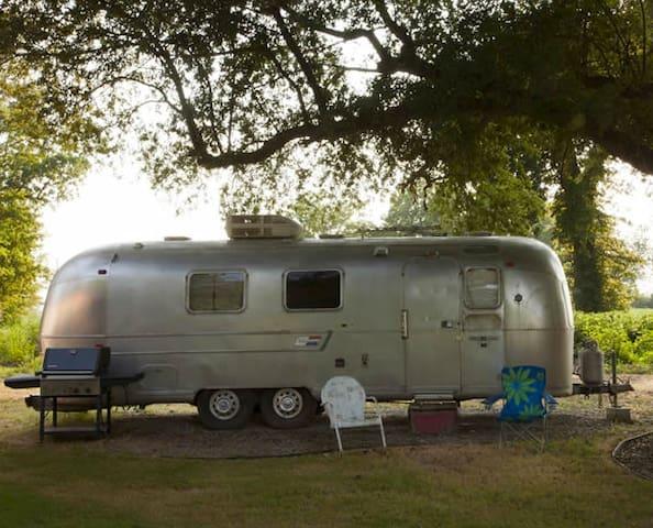 Lester    Seven Chimneys Farm - Clarksdale - Дом на колесах