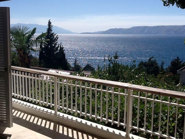 Villa Vaho attractive holiday home-North Adriatic