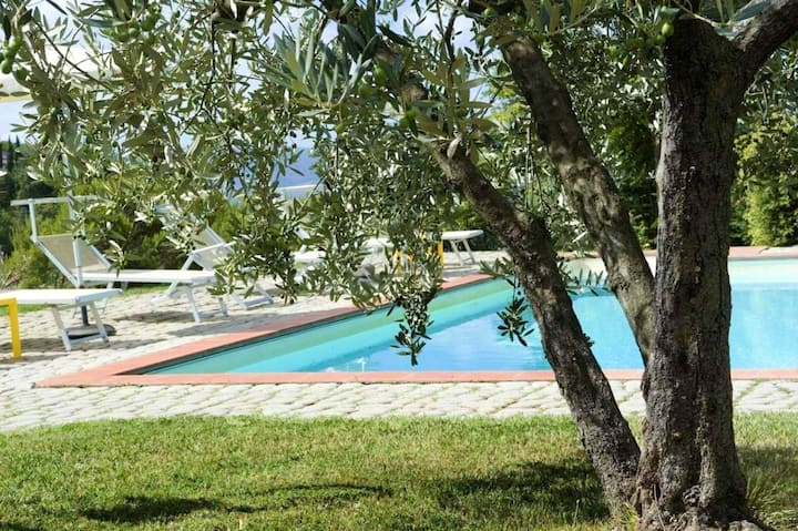 Apartment with one bedroom in Castelfranco Piandiscò, with shared pool