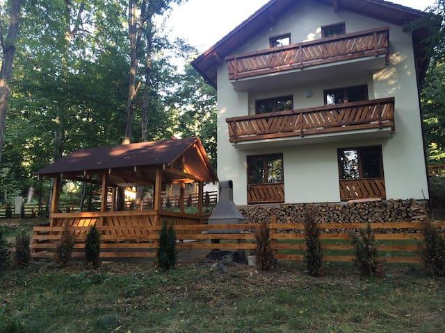 Casa de Vacanta Mogosa