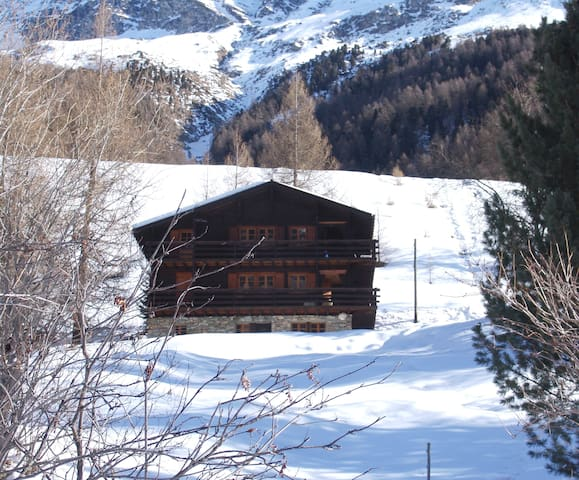 Appartement dans un chalet traditionnel (S2) - Ayer - Almhütte