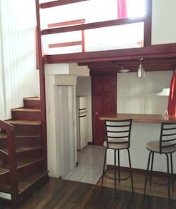Quiet and spacious studio, downtown - San José - Apartment