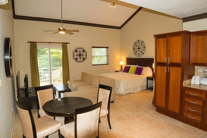 GORGEOUS Studio Condo in OCEAN DREAM - Cabarete