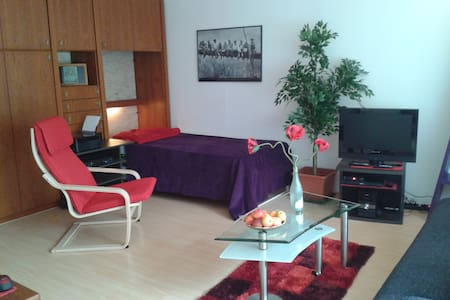 Apartment with WiFi + much more