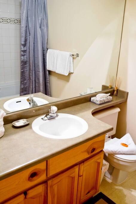 Ensuite washroom for master bedroom