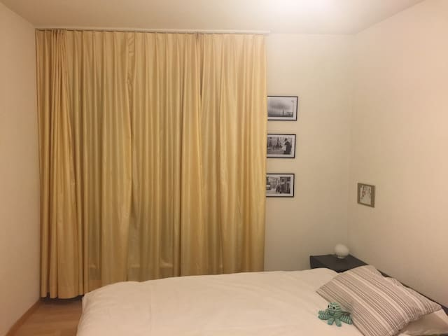 Private double bedroom near the city centre - Zürich - Apartment