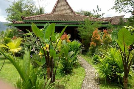 Omah Setumbu - Borobudur - Borobudur - Casa de campo