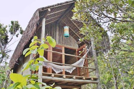 Romantisches »Nest« im Regenwald