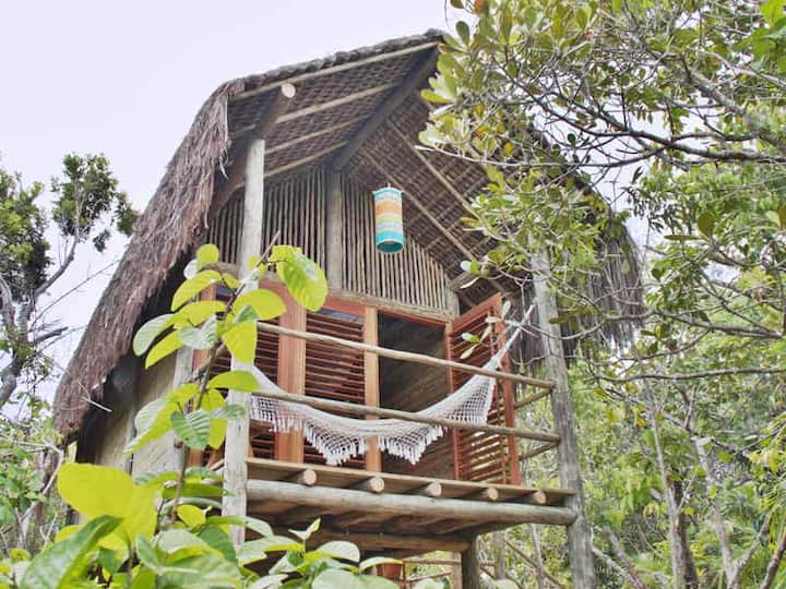 Romantic »nest« in the rain forest