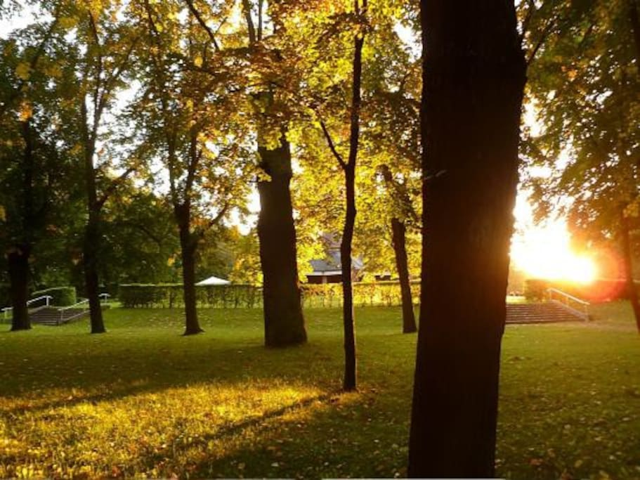 the park is wonderful for jogging, walking or just enjoy the nature