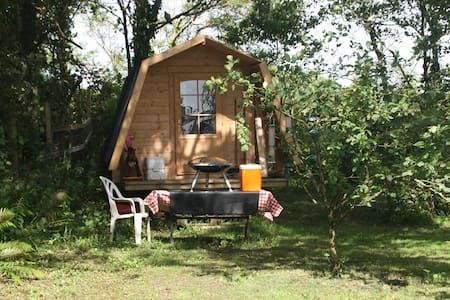 Eco cabin in apple orchard - Bridgerule