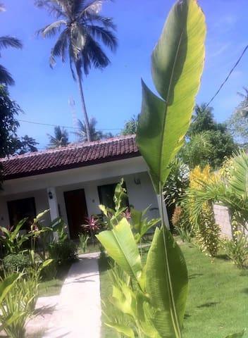 fass inn, kuta lombok - Pujut - Hostel