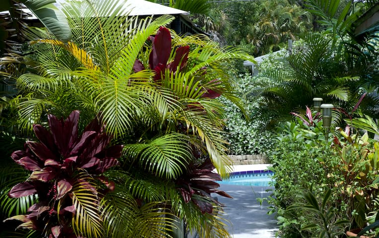 GORGEOUS, TROPICAL, TRANQUIL! - St Petersburg - Haus