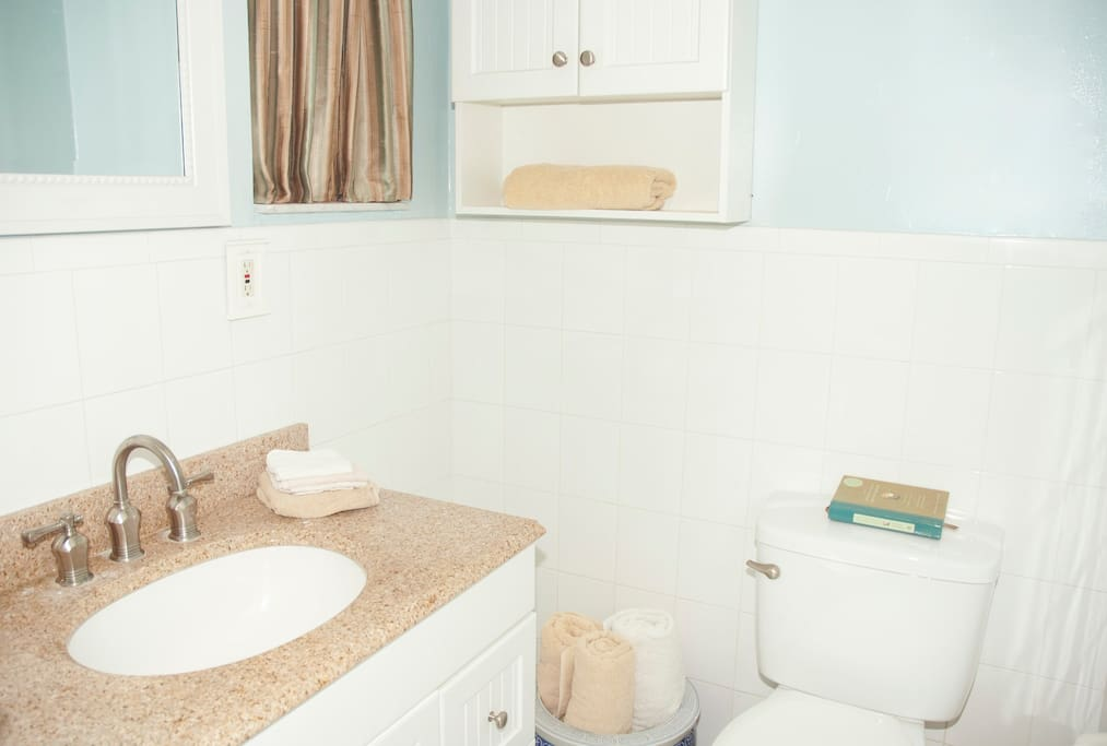 Gleaming private bathroom with tub and shower.