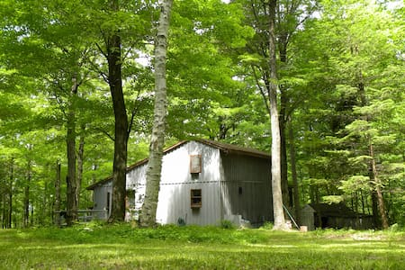 Birch Cabin: A Secluded Retreat - Chatham - Talo