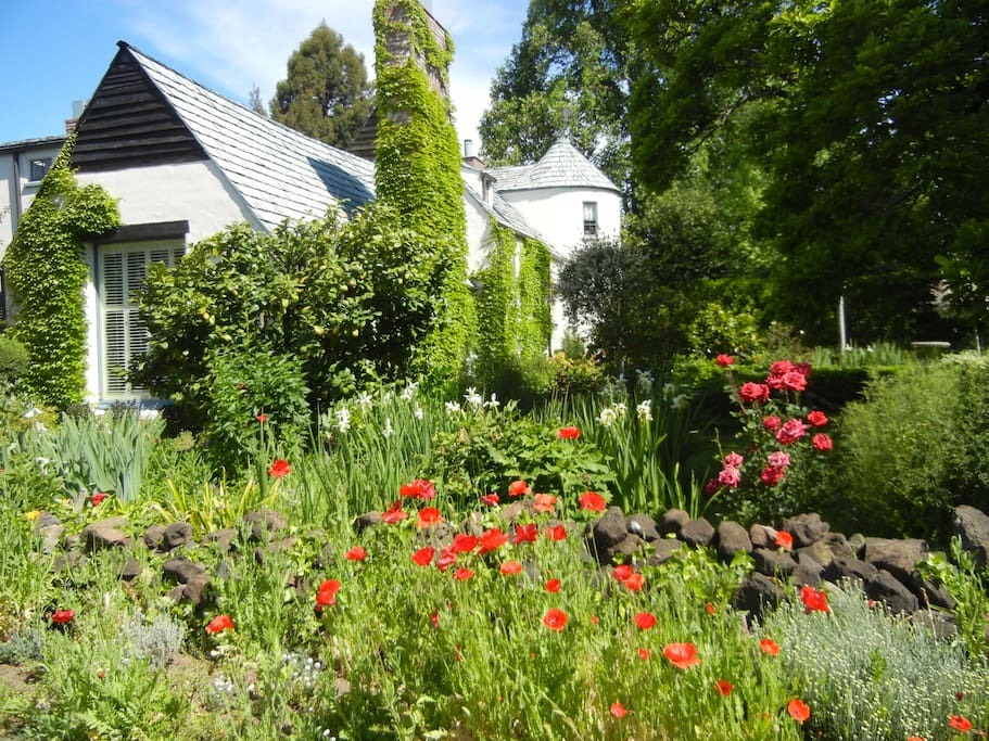 Corner shot of main home in spring when Flanders poppies are in bloom.