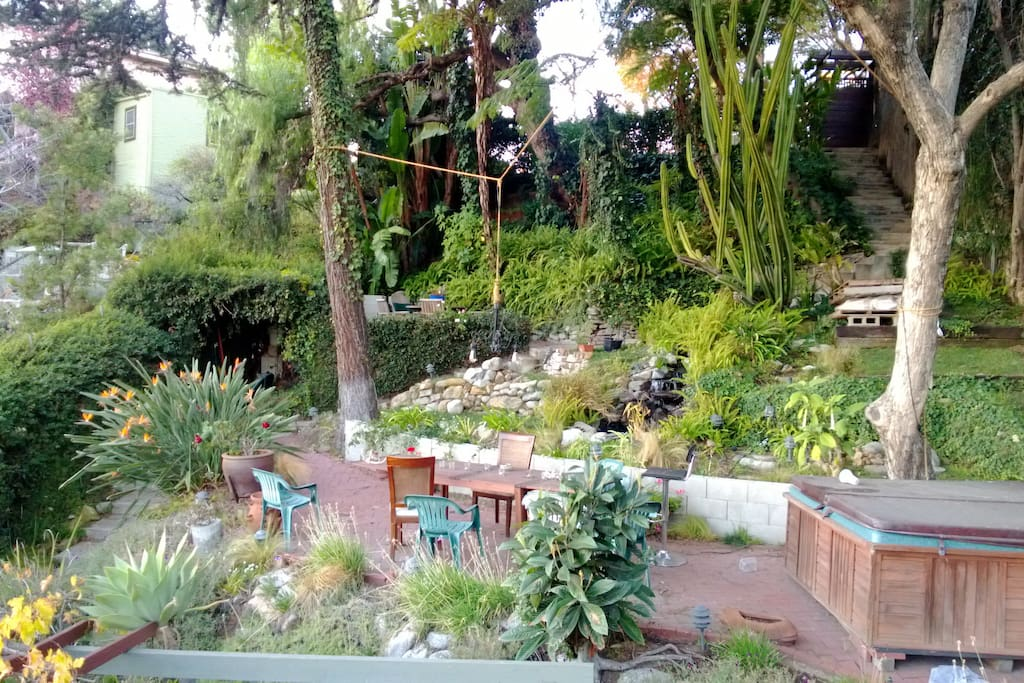 the garden, with two patios, a hot tub, and lots of succulents