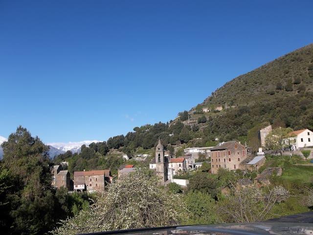 Petite maison de montagne Corse - Bustanico - Dům