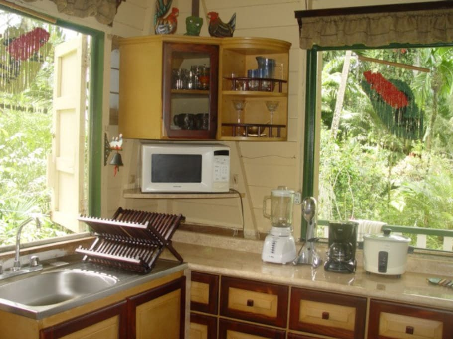 Kitchen with nice view
