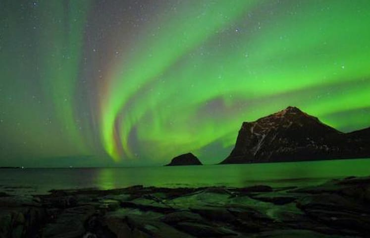 Northern Light Paradise in the Middle of Lofoten