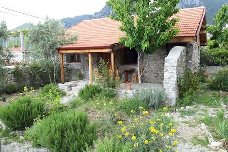 Yeşilüzümlü Konuk Evi (Village House)