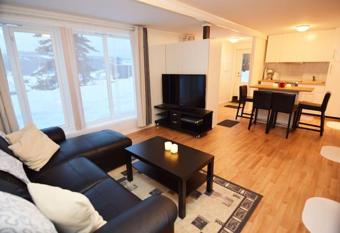 Halvorstuhaugen Nice/New 2 bedrooms basement flat. - Lillehammer - Apartment